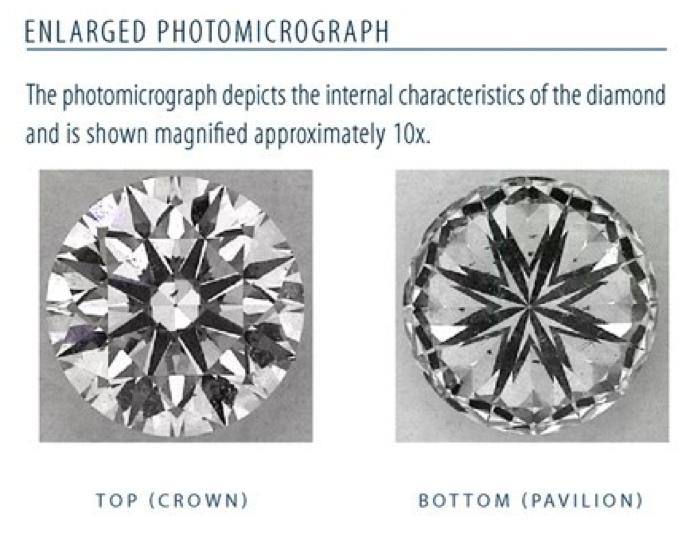 Photomicrograph 2